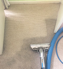 All-Seasons-Carpet-Cleaning-Surrey
