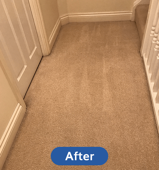 After-Carpet-Cleaning