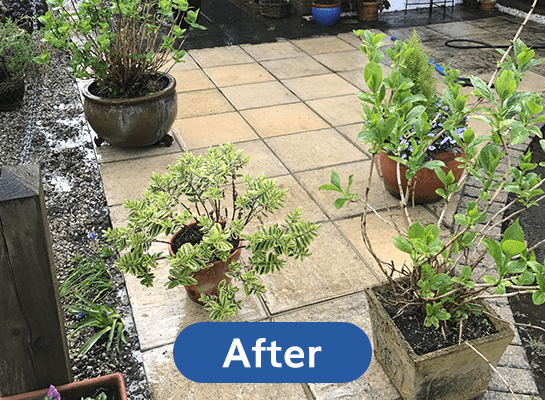 Patio-Clean-After