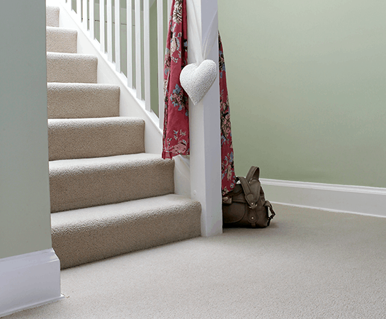 Carpet-Cleaning-Surrey