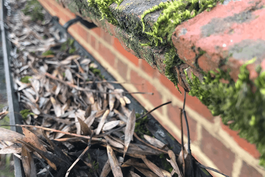 Gutter-Cleaning-Surrey